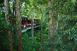 Das Restaurant über dem Mossman River gleicht einem Baumhaus, Silky Oaks Lodge, Queensland, Australien