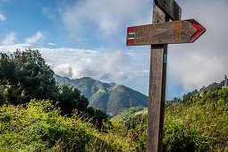 Hiking trail above Vernazza, Cinque Terre, Italy