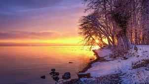 Wintermorgen mit Schnee bei Sonnenaufgang am Starnberger See, Bernried, Bayern, Deutschland