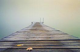 Rauhreif auf Steg bei nebligen Sonnenaufgang, Seeshaupt, Bayern, Deutschland