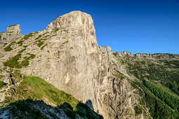 Gipfelwand des Pizzocco, Belluneser Dolomiten, Nationalpark Belluneser Dolomiten, UNESCO Welterbe Dolomiten, Venezien, Venetien, Italien