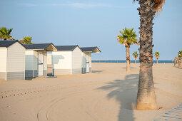 Palmen an einem einsamen Strand mit weißen kleinen Holzbadehütten, Forte dei Marmi, Toskana, Italien