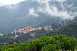 Poggio unter dem Monte Capanne, West-Elba, Toskana, Italien