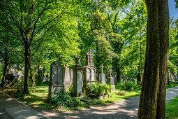 Old south cemetery; Glockenbachviertel Munich; laid out in 1563; on behalf of Duke Albrecht V;