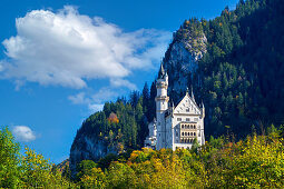 View of Neuschwanstein Castle, Oberallgäu, Bavaria, Germany