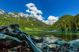 Shore of Hintersteinersee with Wilder Kaiser, Kaiser Mountains, Tyrol, Austria