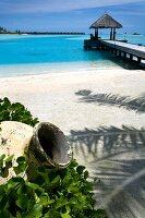 Lagune, Steg führt ins Meer, Insel Veligandu Huraa, Malediven
