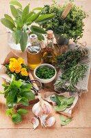 An arrangement of fresh herbs, garlic and oil