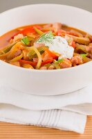 Soljanka (Osteuropäischer Fleischeintopf mit Gemüse und Sauerrahm)