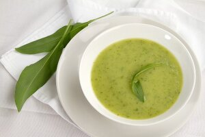 Ramsons (wild garlic) soup