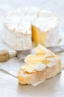 A slice of bread topped Camembert with a sliced Camembert in the background