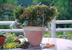 Hanging Basket Bepflanzen Folie Als Bild Kaufen 12110737