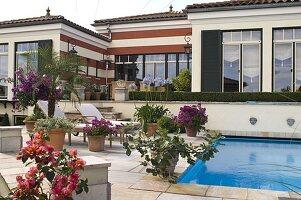 Mediterranes Flair : Swimmingpool eingelassen in Terrasse mit Kübelpflanzen