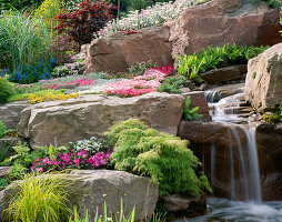 WATERFALL THROUGH ROCKS with ALPINE PLANTS, ASPLENIUM AND AQUILEGIA. THE ALPINE Garden SOCIETY'S 'MAGIC of THE MOUNTAINS' DESIGNED by M. UPWARD / R. MERCER. CHELSEA