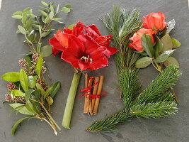 Zutatenstil für roten Weihnachtsstrauß : Hippeastrum 'Red Lion' (Amaryllis),