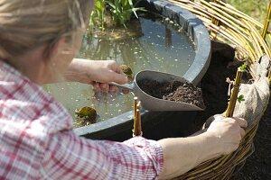 Mini-Teich mit bepflanzter Einfassung aus Weide 10/12