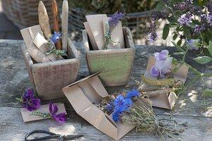 Samen in selbstgemachten Papiertüten sammeln und verschenken
