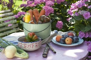 Frisch geerntetes Gemüse und Obst auf Gartentisch