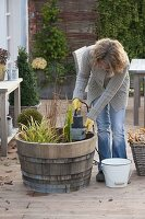 Frau nimmt Pumpe aus Holzfass als Mini-Teich