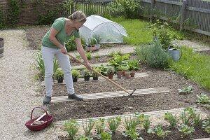 Kartoffeln anbauen im Biogarten