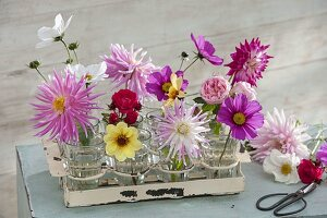 Einzelne Blüten in kleinen Gläsern