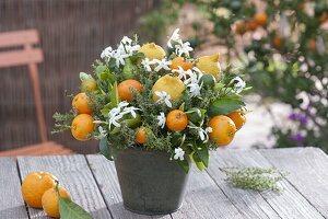 Thymian mediterran dekoriert mit Früchten und Blüten