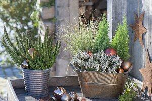 Kupferne Jardiniere und Topf weihnachtlich mit Calluna Garden Girls 'Helena'