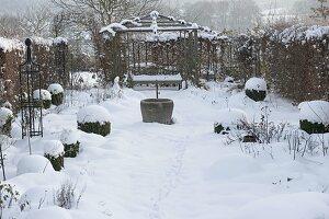 Verschneite Rosenbeete , Buxus (Buchs - Kugeln), Hecke, Pavillon