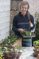 Wintergemüse in Kasten und Korb auf Terrassentisch