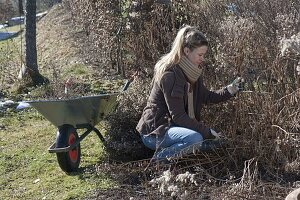 Frau macht Frühjahrsputz im Garten