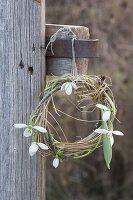 Kränzchen aus Galanthus (Schneeglöckchen), Zweig und Gras