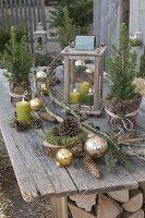 Ländliche Terrasse weihnachtlich geschmückt mit Picea glauca