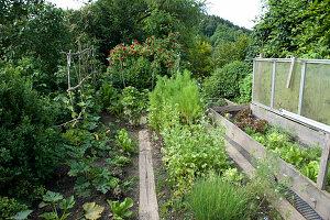 Nutzgarten mit Kräutern und Gemüse