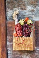Bunter Mais mit Kastanien und Hagebutten