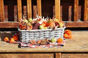 Korb mit buntem Mais, Kastanien, Lampionfrüchten und Herbstlaub