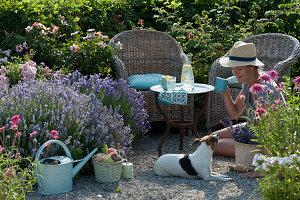 Korbsessel am Beet mit Lavendel, persischer Rose und Scheinsonnenhut, Frau spielt mit Hund Zula