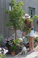 Frau gießt Birnbaum, Korb mit Hängegeranie und Kürbispflanze, Sellerie im Tontopf, Hund Zula