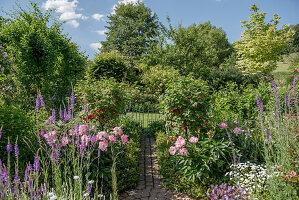 Bauerngarten mit Pfingstrosen und Johannisbeerstämmchen