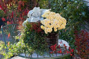 Korb mit Chrysantheme 'Rico Apricot', Efeu, Kreuzkraut 'Angel Wings', Segge und Zweige mit Hagebutten als Deko