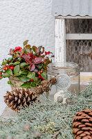 Winterliche Deko mit Scheinbeere, Zapfen, Windlicht und Zypressenzweig