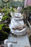 Gedeckter Tisch mit Girlande aus Ballenmoos mit Hyazinthen, Zapfen und Greiskraut in der Tischmitte