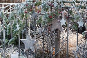 Weihnachtliche Dekoration am Gartenzaun mit Kiefer, Hagebutten und Holzsternen