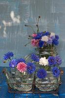 Blaue, weiße und rosafarbene Kornblumen in Einmachgläsern