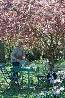 Sitzgruppe unter Zierapfelbaum 'Paul Hauber', Frau deckt den Tisch, Junge sitzt und liest, Hund Zula