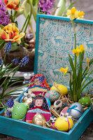 Holzkasten mit bunten Ostereiern, Narzisse und Eierwärmern