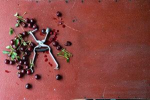 Frisch geerntete Kirschen mit Kirschentkerner auf rotbraunem Untergrund