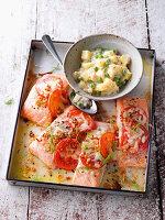 Ofen-Fischfilet mit Béchamel-Kartoffeln