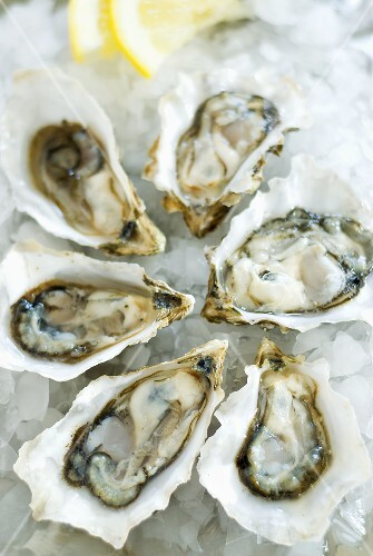Fresh oysters on crushed ice with lemon wedges