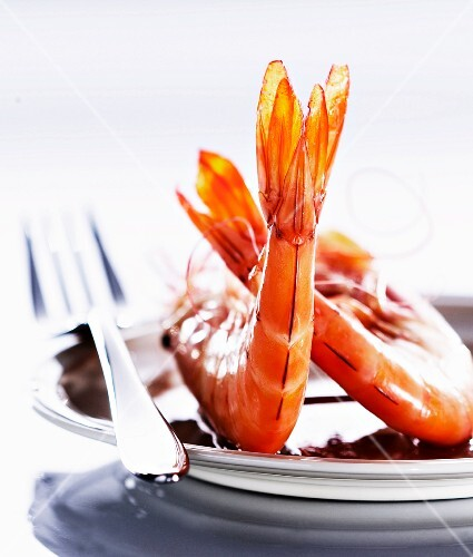 Cooked giant prawns (close-up)