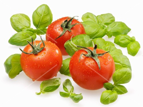 Freshly washed tomatoes and basil